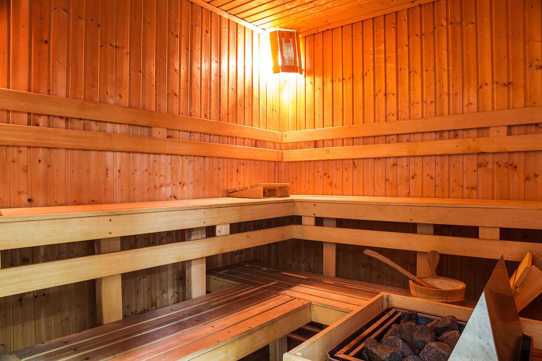 sauna geneva